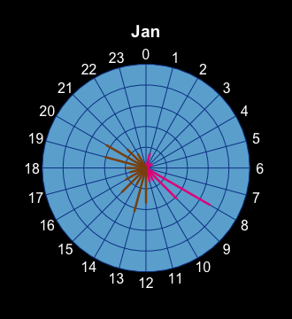 Radial Plot showing steps walked in Jan 2018